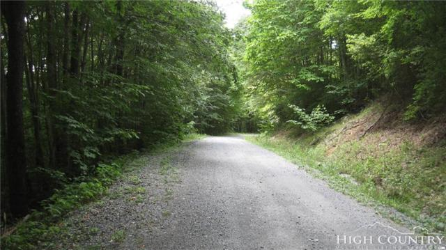 401 Woodland Road, Beech Mountain, NC 28604 (MLS #210532) :: Keller Williams Realty - Exurbia Real Estate Group
