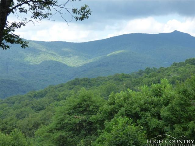 TBD Maggie Mountain West Road, Blowing Rock, NC 28605 (MLS #210544) :: Keller Williams Realty - Exurbia Real Estate Group