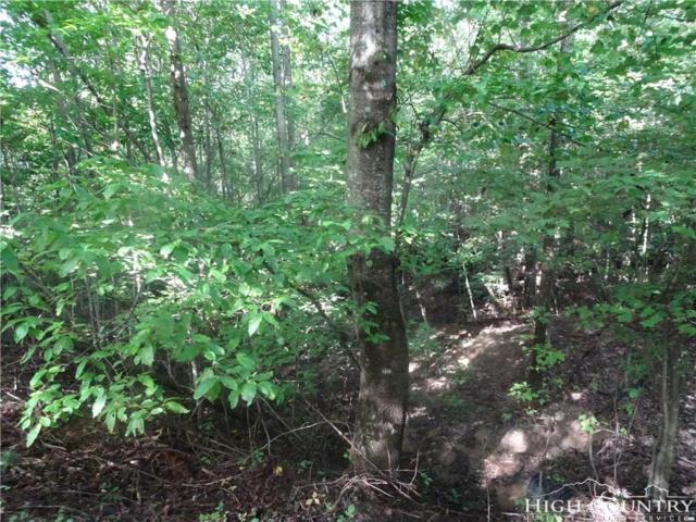 TBD Lot 99 Brookline Drive, Purlear, NC 28665 (MLS #210715) :: Keller Williams Realty - Exurbia Real Estate Group
