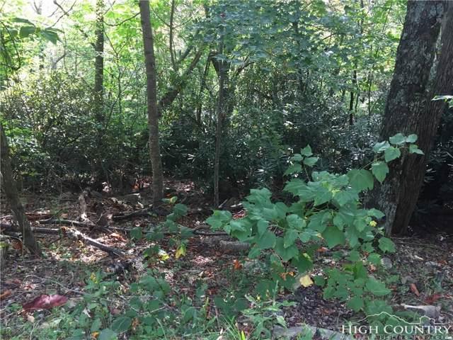 102 Bear Branch Road, Beech Mountain, NC 28604 (MLS #210799) :: RE/MAX Impact Realty