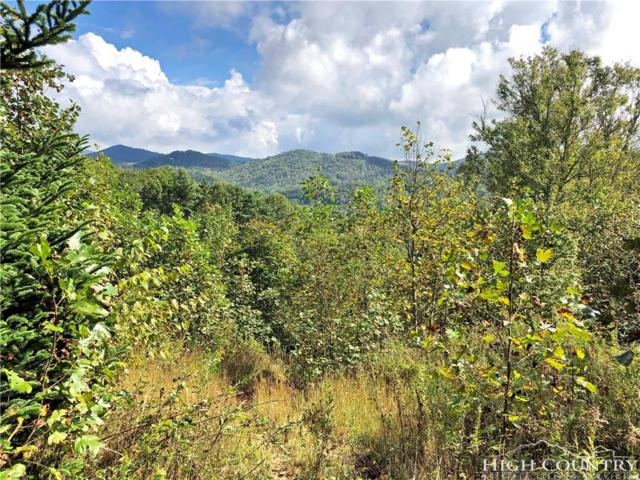 TBD Townsend Trail, Boone, NC 28607 (MLS #210829) :: RE/MAX Impact Realty