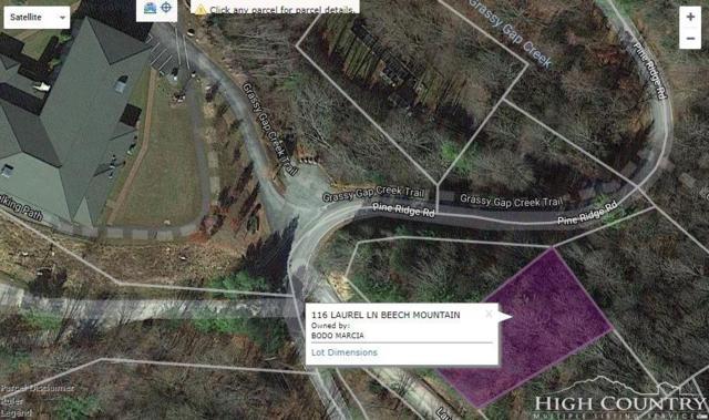 116 Laurel Lane, Beech Mountain, NC 28604 (MLS #210883) :: RE/MAX Impact Realty