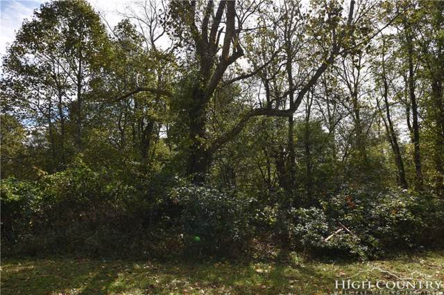 Lot 33 & 34 Westfield Place, Crumpler, NC 28617 (MLS #211016) :: Keller Williams Realty - Exurbia Real Estate Group
