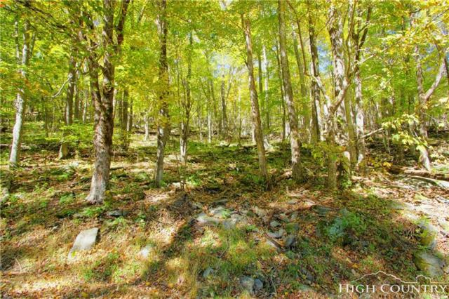 TBD Cliffside Lane, Seven Devils, NC 28604 (MLS #211031) :: RE/MAX Impact Realty