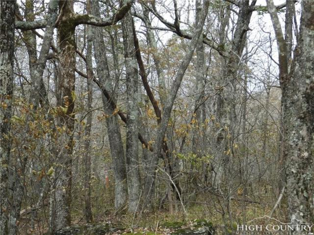 TBD Lot 69 Pinnacle Dr., West Jefferson, NC 28694 (MLS #211147) :: RE/MAX Impact Realty