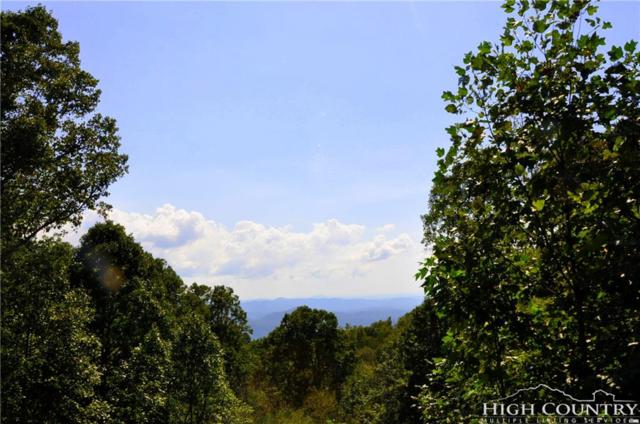 1165 Old Johns River Road, Blowing Rock, NC 28605 (MLS #211171) :: Keller Williams Realty - Exurbia Real Estate Group