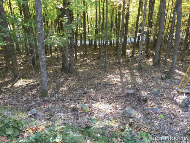 108 S Hickory Lane, Beech Mountain, NC 28604 (MLS #211236) :: RE/MAX Impact Realty