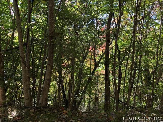 105 Sassafras Road, Beech Mountain, NC 28604 (MLS #211247) :: RE/MAX Impact Realty