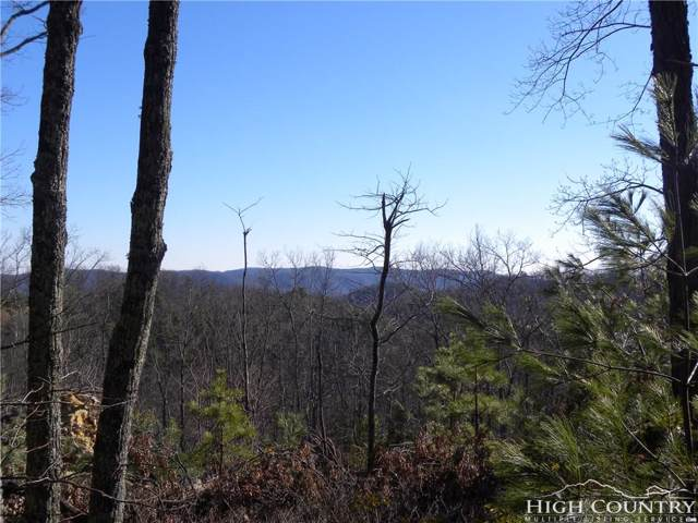 LOT 216 Reynolds Parkway, Boone, NC 28607 (MLS #211248) :: RE/MAX Impact Realty