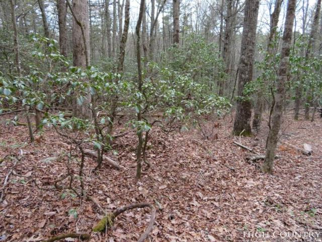 Lot 28 Oak Tree Lane, Jefferson, NC 28640 (MLS #211357) :: Keller Williams Realty - Exurbia Real Estate Group