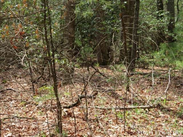 Lot 14 Oak Tree Lane, Jefferson, NC 28640 (MLS #211362) :: Keller Williams Realty - Exurbia Real Estate Group