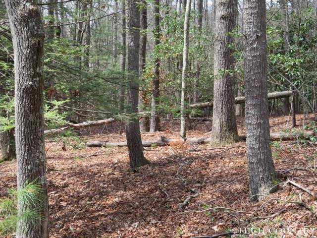 Lot 13 Oak Tree Lane, Jefferson, NC 28640 (MLS #211364) :: Keller Williams Realty - Exurbia Real Estate Group