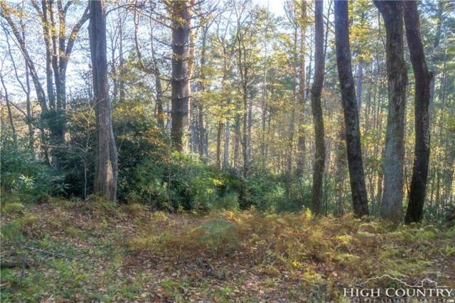 TBD Edith Lane, Blowing Rock, NC 28605 (MLS #211369) :: Keller Williams Realty - Exurbia Real Estate Group