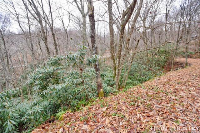 102 Tiger Lily Trail, Beech Mountain, NC 28604 (MLS #211597) :: RE/MAX Impact Realty