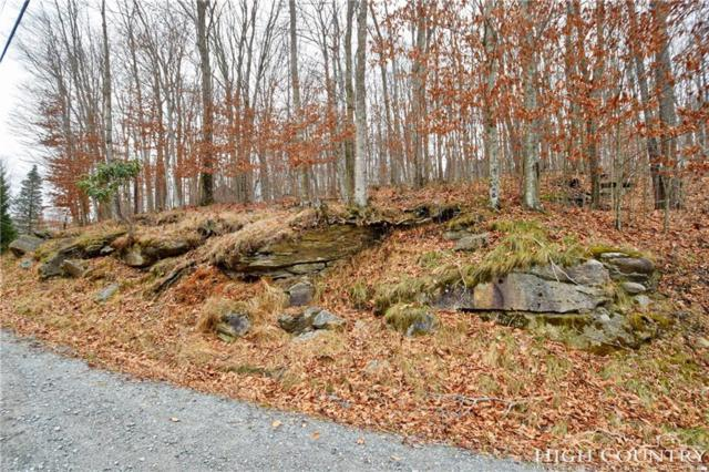 217 Overbrook Trail, Beech Mountain, NC 28604 (MLS #211598) :: RE/MAX Impact Realty