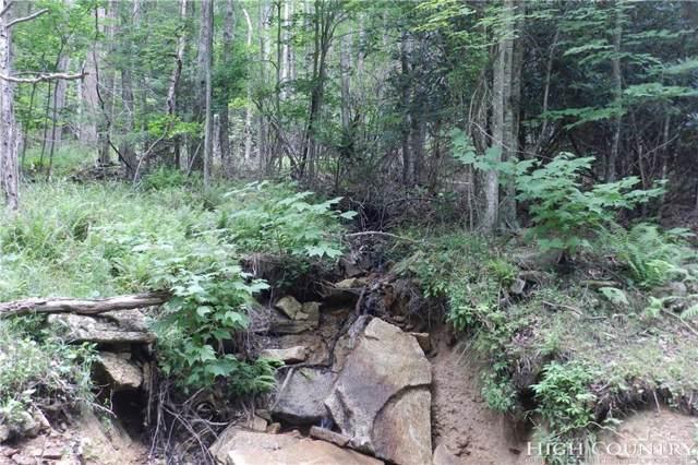 206 Jackpine Road, Beech Mountain, NC 28604 (MLS #211725) :: RE/MAX Impact Realty