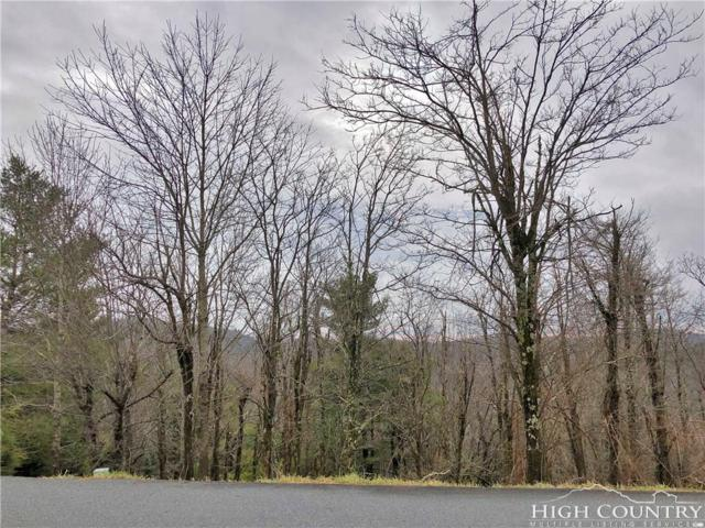 Lot 17 Cezanne Drive, Blowing Rock, NC 28605 (MLS #211767) :: RE/MAX Impact Realty