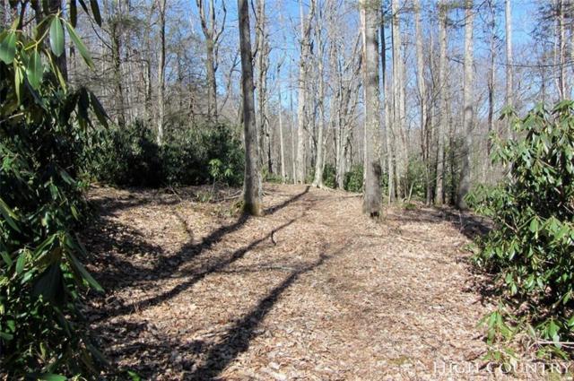 Lot 2 Virgils Lane, Boone, NC 28607 (MLS #211809) :: RE/MAX Impact Realty