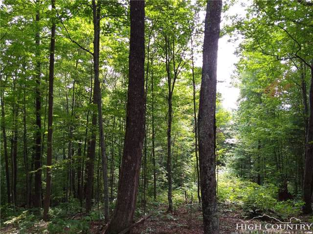 Lot 47 Olde Stone Drive, Crumpler, NC 28617 (MLS #211850) :: RE/MAX Impact Realty