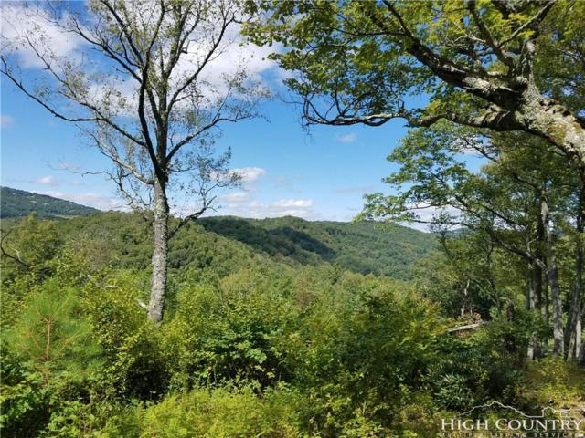 Lot 214 Firethorn, Blowing Rock, NC 28605 (MLS #211901) :: RE/MAX Impact Realty