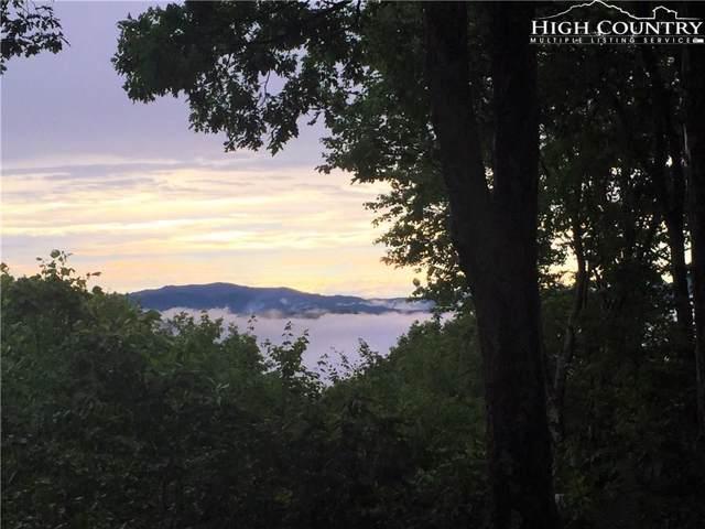 113 Ladys Slipper Lane, Beech Mountain, NC 28604 (MLS #212325) :: RE/MAX Impact Realty