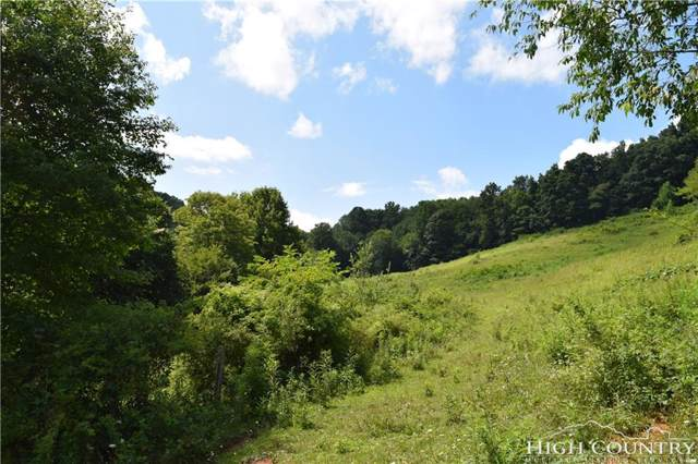 3117/3119 Highway 88, Zionville, NC 28698 (MLS #212326) :: RE/MAX Impact Realty