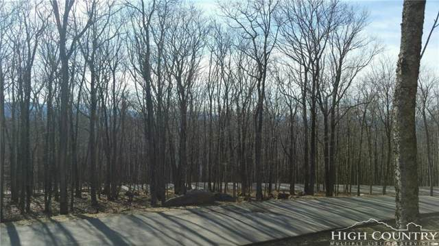 Lot 29 Eagles Nest Trail, Banner Elk, NC 28604 (MLS #212525) :: RE/MAX Impact Realty