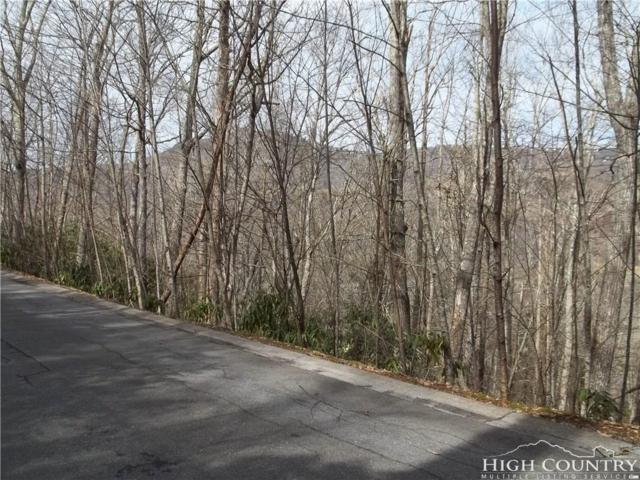 Lot 28 Crooked Creek Lane, Banner Elk, NC 28604 (MLS #212670) :: RE/MAX Impact Realty