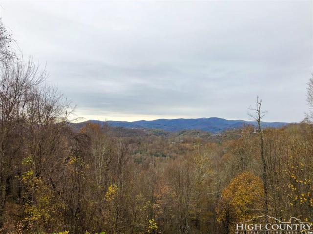 Lot 41 Larkspur Trail, Banner Elk, NC 28604 (MLS #212737) :: RE/MAX Impact Realty