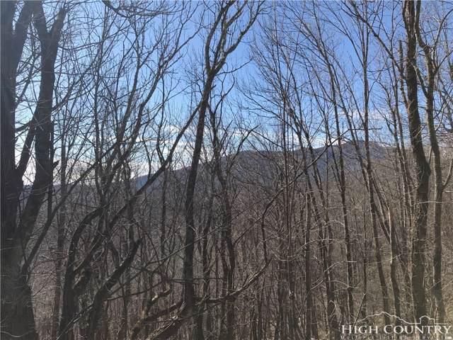 TBD Devils Lake Drive, Seven Devils, NC 28604 (MLS #212758) :: RE/MAX Impact Realty
