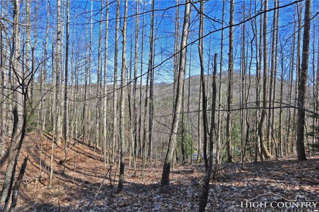 Lot A12 Quill Gordon Lane, Boone, NC 28607 (MLS #212880) :: RE/MAX Impact Realty