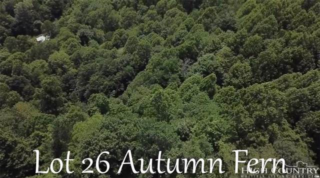 TBD Autumn Fern Court, Banner Elk, NC 28604 (MLS #212918) :: RE/MAX Impact Realty
