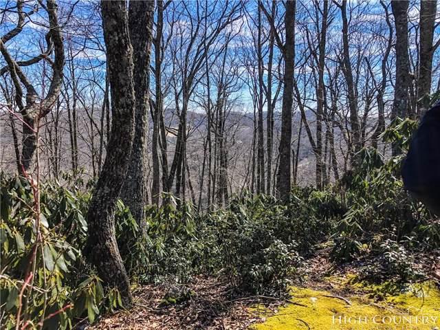 Lot 11 Fieldstone Heights, Blowing Rock, NC 28605 (#213020) :: Mossy Oak Properties Land and Luxury