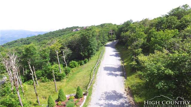 TBD Fox Crest, Beech Mountain, NC 28604 (#213043) :: Mossy Oak Properties Land and Luxury