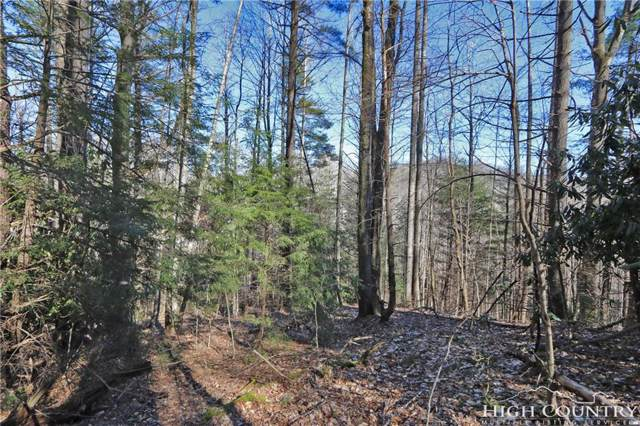 Lot 19 Twin Rivers Drive, Boone, NC 28607 (MLS #213116) :: RE/MAX Impact Realty