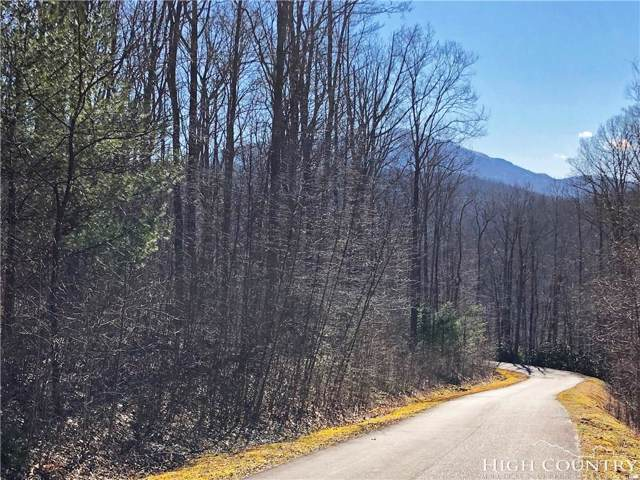 Lot 342 Twin Rivers Drive, Boone, NC 28607 (MLS #213125) :: RE/MAX Impact Realty