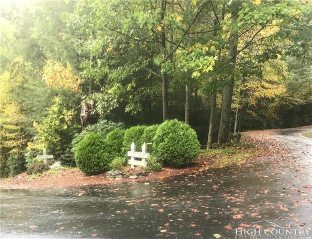 Lot 30 Near Sawrey, Boone, NC 28607 (MLS #213255) :: RE/MAX Impact Realty