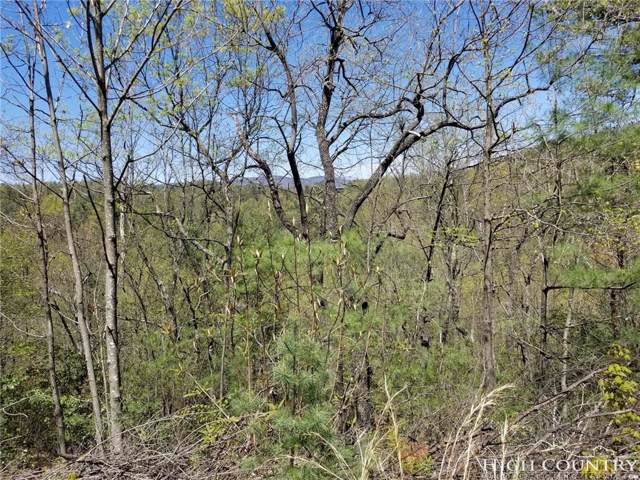 TBD Eagle Nest Road, Purlear, NC 28665 (MLS #213281) :: RE/MAX Impact Realty