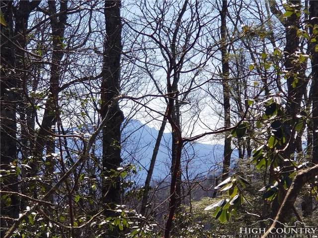 Tbd Wick Wyre Road, Boone, NC 28607 (MLS #213330) :: RE/MAX Impact Realty