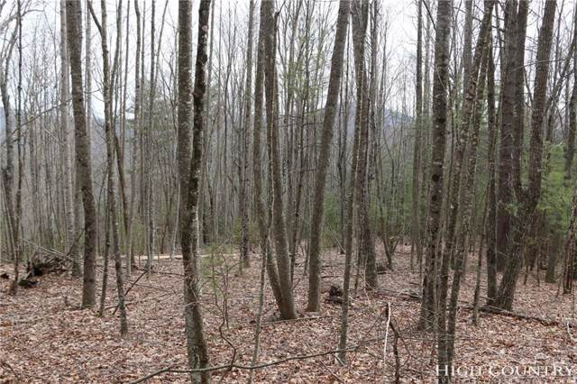 Lot 87 Colby Miller Drive, Jefferson, NC 28640 (MLS #213346) :: RE/MAX Impact Realty
