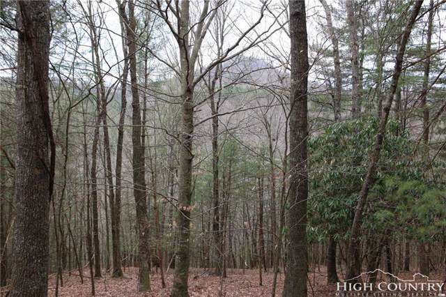 Lot 4 Carla Court, Jefferson, NC 28640 (MLS #213376) :: RE/MAX Impact Realty