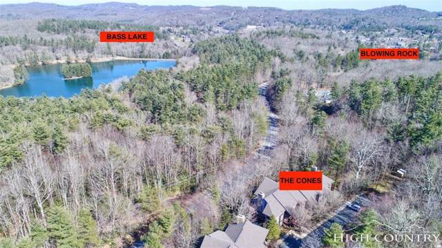 179 The Cones B 4, Blowing Rock, NC 28605 (MLS #213403) :: RE/MAX Impact Realty