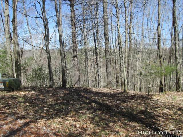 80 Forest Hill Dr. Drive, Sparta, NC 28675 (MLS #213407) :: RE/MAX Impact Realty