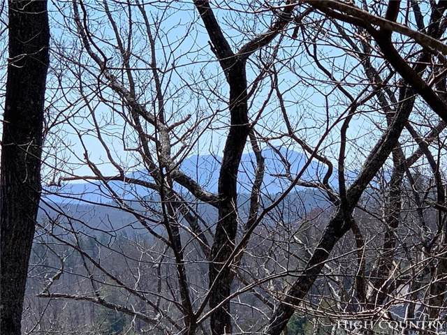 TBD Ski Crest Park, Blowing Rock, NC 28605 (MLS #213678) :: RE/MAX Impact Realty