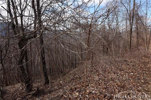 Lot 238 Abbie Trail, West Jefferson, NC 28694 (MLS #213701) :: RE/MAX Impact Realty
