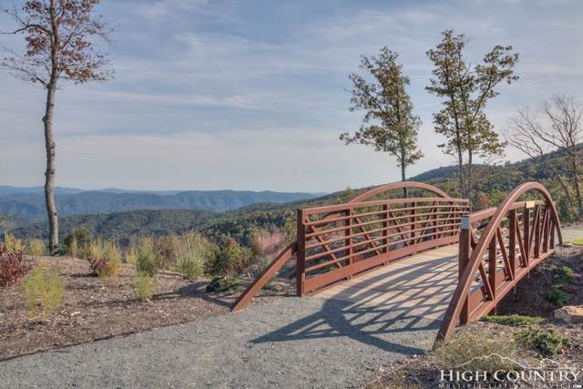 Lot 303 Ninebark Road, Boone, NC 28607 (MLS #213922) :: RE/MAX Impact Realty