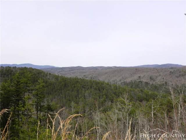 Lot 1332 Pogonia Road, Boone, NC 28607 (MLS #213925) :: RE/MAX Impact Realty