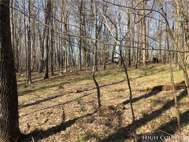 811 Charter Hills Road, Beech Mountain, NC 28604 (MLS #213977) :: RE/MAX Impact Realty