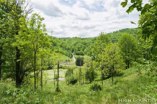 Lot 4 Raven Cliff Drive, Vilas, NC 28692 (MLS #214062) :: RE/MAX Impact Realty