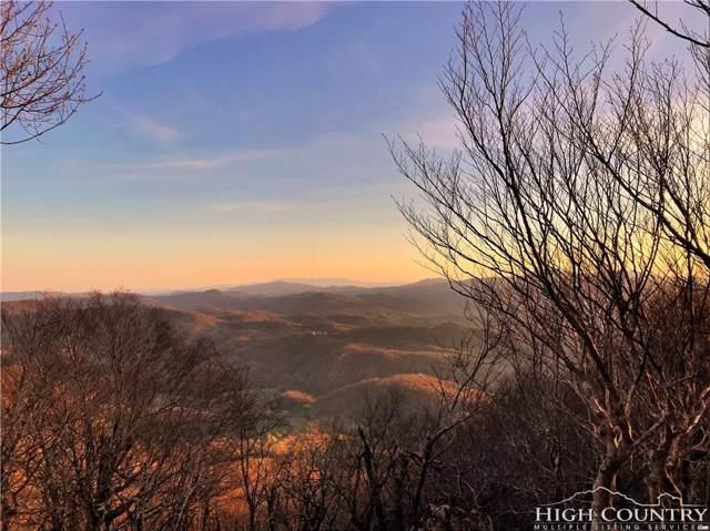 Lot 10 Oz Circle, Beech Mountain, NC 28604 (MLS #214152) :: RE/MAX Impact Realty